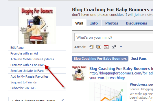 Promote Your Facebook Fan Page 1